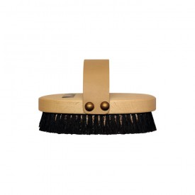 Klapp Repagen Body Ionic Brush